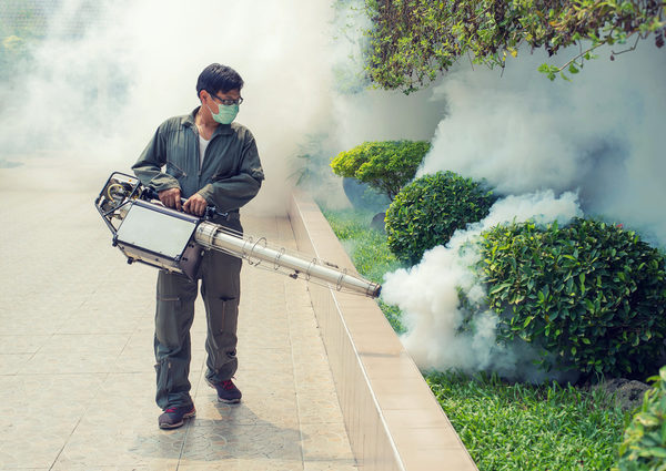 Best Mosquito Pest Control in Phoenix Operators for Mosquito Eradication