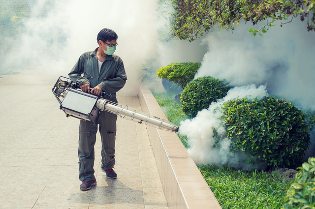 Best Mosquito Pest Control in Phoenix Operators for Mosquito Eradication