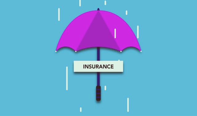 An Ultimate Guide To Term Insurance Plan