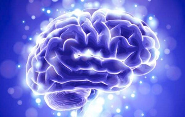 What is the Relationship Between Seizures and Alzheimer's Disease?